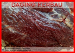 DAGING KERBAU